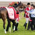 Photos: ラキシス「えーいまどろっこしいわ!」【141116京都11Rエリザベス女王杯】