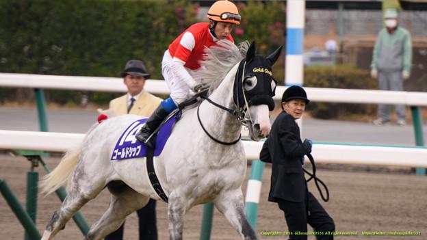 Photos: ?ゴールドシップ(岩田)「マンボちゃんに負けないくらいの気迫で行ってみようか~」【141228中山10R有馬記念】