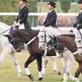 マウントフォンテン・マイネルチャールズ・ダンサーズナカヤマ「現役馬のみなさんおつかれです…」プリサイスマシーン「いや、行けるかな~」ウイネツゥー「走ってきなさいよ」【141228中山10R有馬記念】