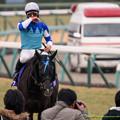 Photos: ヴィルシーナ「ジェンティルちゃんへの借りは…次の世代に託しましょうかね」【141228中山10R有馬記念】→