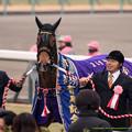 Photos: ジェンティルドンナ「表彰式だからって出て来たけどあまり注目されてないのかしらワタシ」【141228中山10R有馬記念】