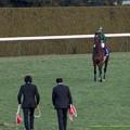 Photos: ジャスタウェイ「あれあれ、お迎えがきてしまった…まだ走りたいのに~」【150104京都ジャスタウェイ引退式】