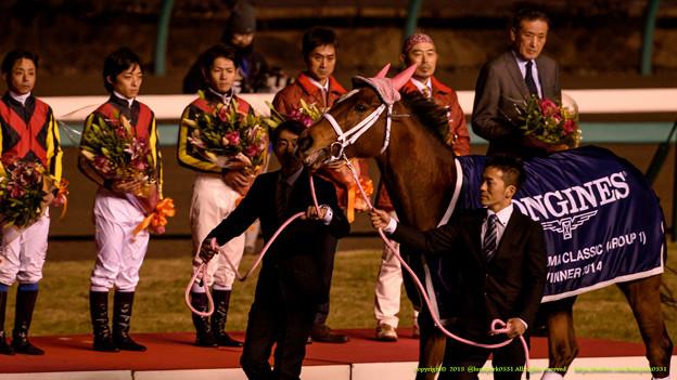 Photos: ジェンティルドンナ「あ、みなさん花束もらったのね、きれいねー…ってどこまで無表情なのよ!」【141228中山ジェンティルドンナ引退式】