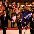 Photos: ジェンティルドンナ「岩田さんなんか何か嫌なことでもあったのかしらね…」【141228中山ジェンティルドンナ引退式】