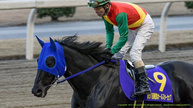 トーセンジャガー(張田京)「うわぁこれが地方競馬かぁ、なかなかカオスだなぁ…」【150103川崎11R報知オールスターC】