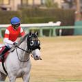 Photos: ゴールドシップ「はぁ、いい汗流した…岩田さん…大丈夫?」【150125中山11RAJCC】