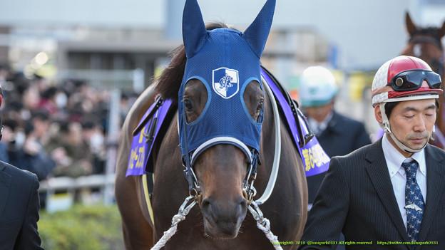 ハッピースプリント「いちおう川崎でのG1馬だからな~がんばらんとね~」【150128川崎11R川崎記念】