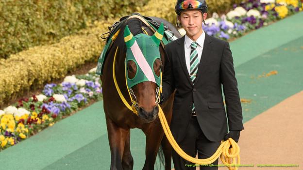 Photos: ?タガノグランパ「賑やかなお馬さんだなぁ…」【150208東京11R東京新聞杯】