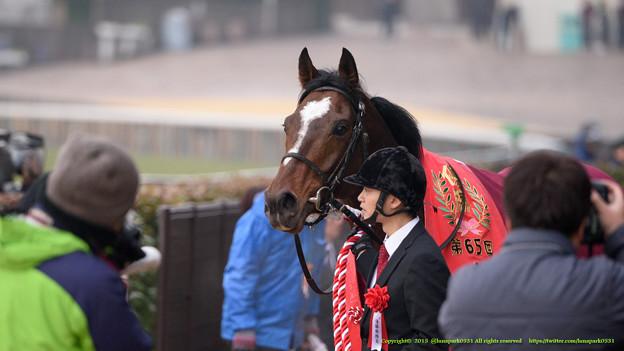 ヴァンセンヌ「いやあ、ついに重賞勝っちゃいました」【150208東京11R東京新聞杯】