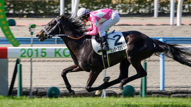 ワンダーアツレッタが2馬身半突き放して未勝利脱出【150214小倉4R3歳未勝利】
