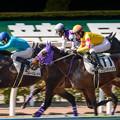 Photos: ブルーバレットが逃げようとするところコウエイテンペスタが必死に競りかける【150214小倉5R4上500万下】
