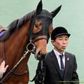Photos: ?カゼノコ「なんかね、後ろの視線がやたら怖いのよ!」【150222東京11RフェブラリーS】 #ジロリ馬