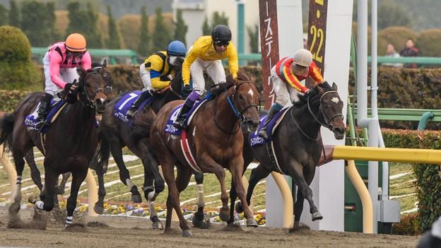 インカンテーションが半馬身差まで詰めたがコパノリッキーが史上初の連覇達成。武豊もようやくひと安堵【150222東京11RフェブラリーS】