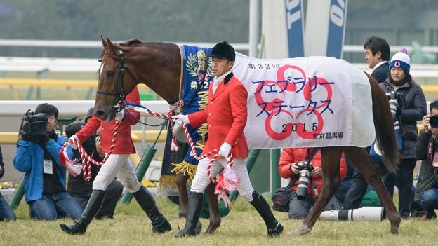 コパノリッキー「この馬着2枚目ってのも誇らしいよね~すげえ」【150222東京11RフェブラリーS】