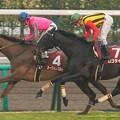 Photos: 24年ぶりに牝馬Vを飾ったヌーヴォレコルト、ロゴタイプあと一歩逃げ切れず【150301中山11R中山記念】