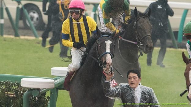 イスラボニータ「やっぱりこの馬場はダメだよ!」【150301中山11R中山記念】 #ジロリ馬