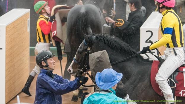 イスラボニータ「なんでこんな馬場で走らなきゃいけないの?」「よくがんばりましたよ」【150301中山11R中山記念】