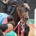 Photos: サトノクラウン「終わったかい?帰るよ!」【150308中山11R弥生賞】 #ジロリ馬