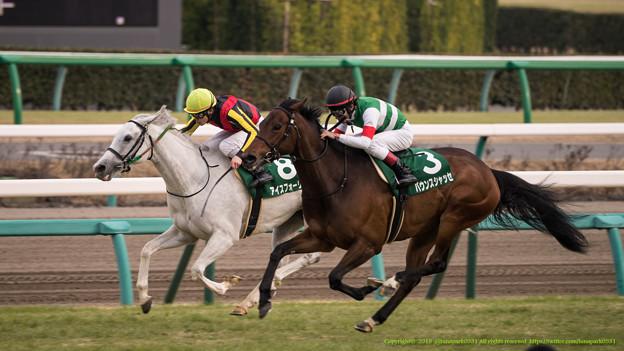 アイスフォーリスをとらえるバウンスシャッセ【150315中山11R中山牝馬S】 #keiba