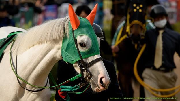 アイスフォーリス「なんだか欲望が渦巻いてるわね」【150315中山11R中山牝馬S】 #ジロリ馬
