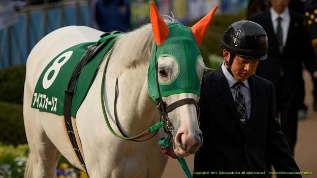 アイスフォーリス「でもやっぱり白いよな~」【150315中山11R中山牝馬S】