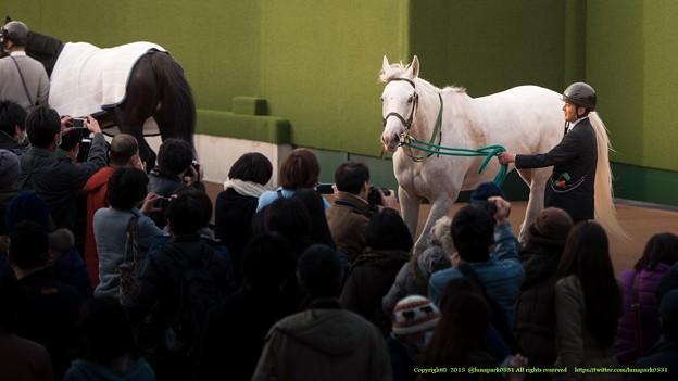 Photos: アイスフォーリス「はい、こっちの方~お待たせしました~馬券獲った~?」【150315中山11R中山牝馬S】