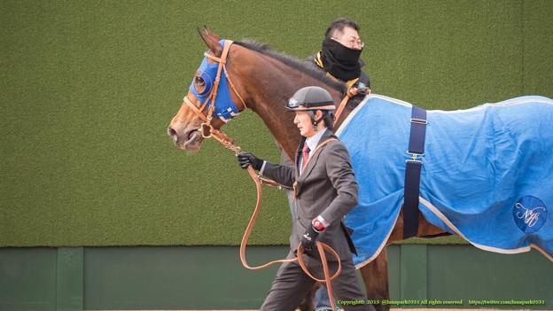 エバーブロッサム「みんなに愛されるお馬さんになりたいな~」【150315中山11R中山牝馬S】