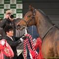Photos: バウンスシャッセ「さてと…そろそろ私の出番にしてもよいかしらね?」【150315中山11R中山牝馬S】 #ジロリ馬