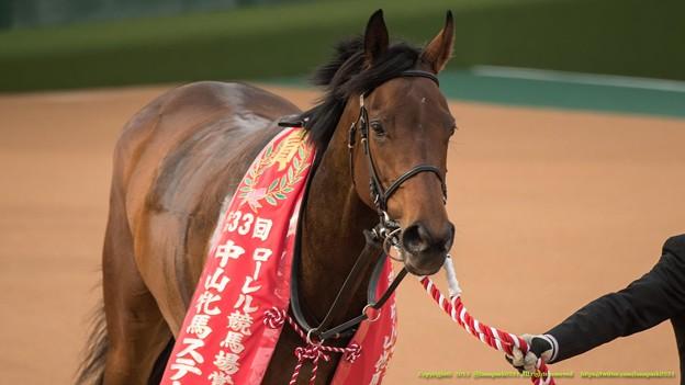 バウンスシャッセ「人間って勝手な生き物だものね~皐月賞のときに知ったわよ」【150315中山11R中山牝馬S】