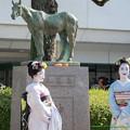 写真: シンザン像「ニンジンに舞妓はん、よろしいおすな~」【141026京都9R壬生特別】