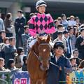 ?スマートグレイス(武豊)「ユタカさん…デビューで1.1倍ってのはどうなのよ…」【141116京都6R新馬】