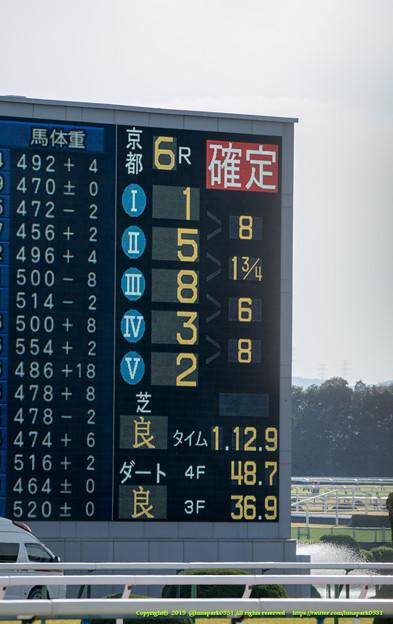 スマートグレイス、結局8馬身差の圧勝。【141116京都6R新馬】