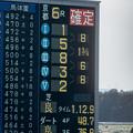 Photos: スマートグレイス、結局8馬身差の圧勝。【141116京都6R新馬】