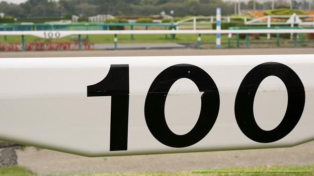 芝100からダート100を臨む。意外にスルーされててかわいそうだったけど、いつもの撮影ではかなり役立ってる標識です【150419中山馬場開放】