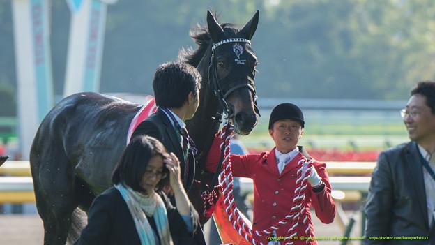 Photos: シングウィズジョイ「ずーっと撮ってるわね…飽きないのかしら」【150426東京11RフローラS】 #ジロリ馬 #見つめうま