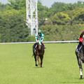 Photos: レンイングランド「追っかけられてる気がする」【150510東京11RNHKマイルC】