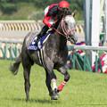 Photos: レンイングランド(内田)「内田さん、シップさんのつもりで頑張ります」【150510東京11RNHKマイルC】