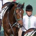 Photos: (10)ミュゼエイリアン「いくら父ちゃんが東京24で勝ったっていってもだね…それはそれだよ…」【150531東京10R東京優駿】