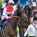 Photos: ショウナンパンドラ「オトコばかりのレースはおっかないわね~」【150628阪神11R宝塚記念】
