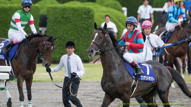 (7)ワンアンドオンリー(M.デムーロ)「よーし、久々の日本だから頑張っちゃうぞ~!」ディアデラマドレ「あらダービー馬、たくましいわね」【150628阪神11R宝塚記念】