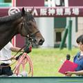 ラブリーデイ「ほ、細江さーん??」【150628阪神11R宝塚記念】 #ジロリ馬