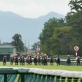Photos: 600m、ルグランフリソンが先頭、内ピッタリにカミノライデン、馬場の二分どころロードクエストはまだ中団【150830新潟11R新潟2歳S】