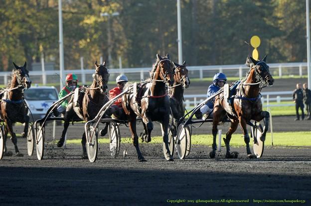 (10)Cristal Moneyが150mで先頭のCoquin Bebeを捕える[151109ヴァンセンヌC3'Prix Abel Bassigny'(GII)]