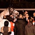 写真: ゴールドシップ「そんなにしんみりすんなよ~(嘶」【151227中山ゴールドシップ引退式】 #ジロリ馬