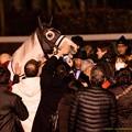 写真: ゴールドシップ「すげえペタペタし放題じゃねえか~」【151227中山ゴールドシップ引退式】 #ジロリ馬