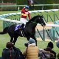 写真: ゴールドアクター「隼人くんよかったな~!大喜びだな!」【151227中山10R有馬記念】 #keiba #有馬記念