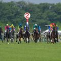 写真: 一周目、マイネルハニーを追いかけるアグネスフォルテ、それを見ていく各馬【160529東京10R東京優駿(日本ダービー)】