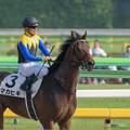 写真: 写真判定が出た瞬間。マカヒキ「ほらね。勝ってたでしょ」【160529東京10R東京優駿(日本ダービー)】