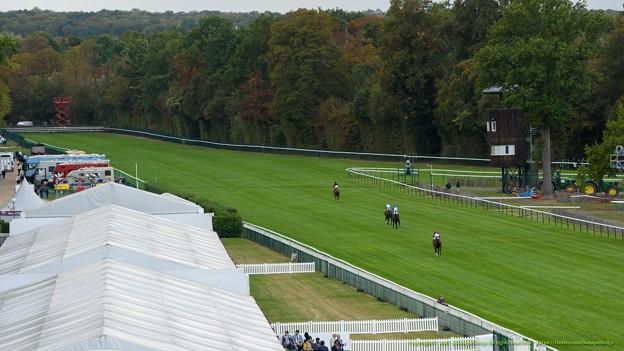 3階展望席から眺める。ポケット方向に流していく各馬[161001シャンティイC6_QatarPrixDanielWildenstein(GII)] #Chantilly
