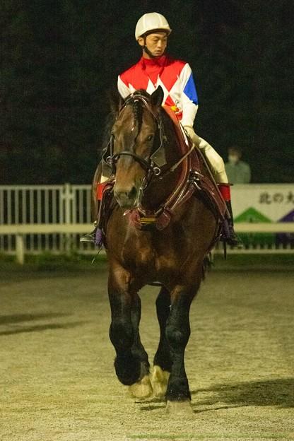 (1)メジロゴーリキ。6歳馬代表としての貫禄。【200920帯広11R岩見沢記念BG2】